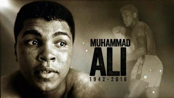 Float like a Butterfly Sting like a Bee – Why we Love the Energy of Muhammad Ali