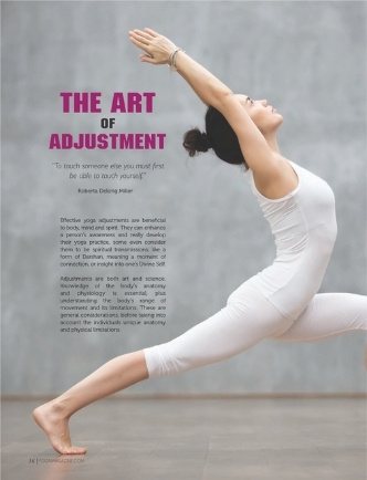 The Art of Adjustment by Shola Arewa